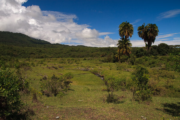 Tansania_2009-5503.jpg