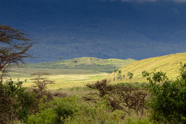 Tansania_2009-5588.jpg