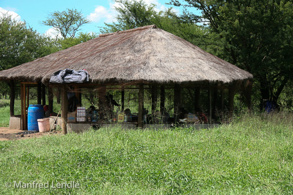 Tansania_2009-6533.jpg
