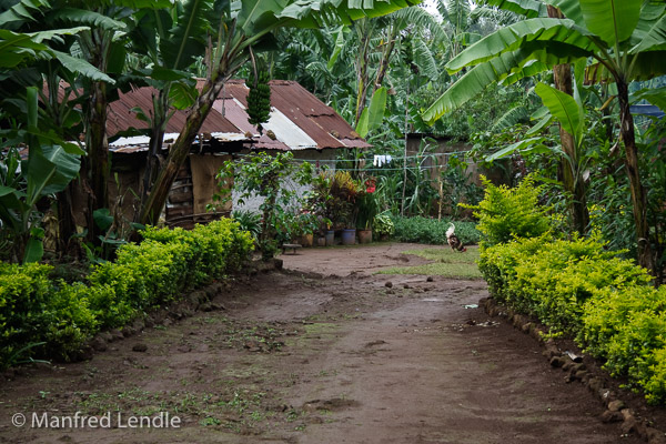 Tansania_2009-5442.jpg