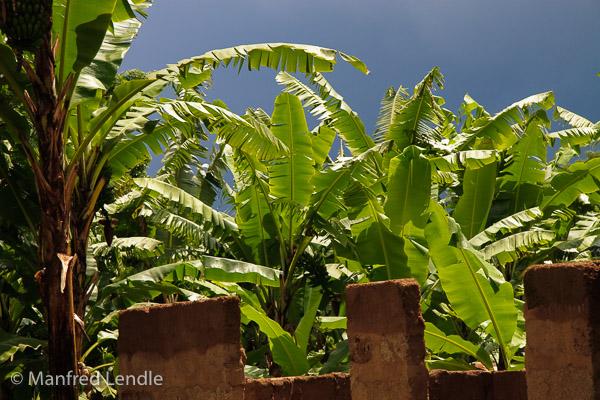 Tansania_2009-5449.jpg