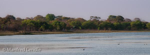 Zambia_2011_20D-2342.jpg