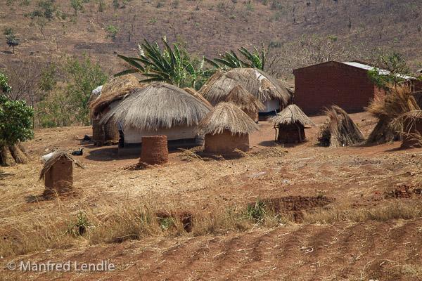 Zambia_2011_1D-4305.jpg