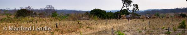 Zambia_2011_1D-4685.jpg
