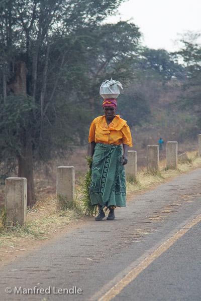Zambia_2011_1D-4313.jpg