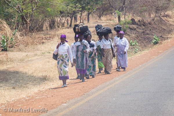 Zambia_2011_1D-4335.jpg