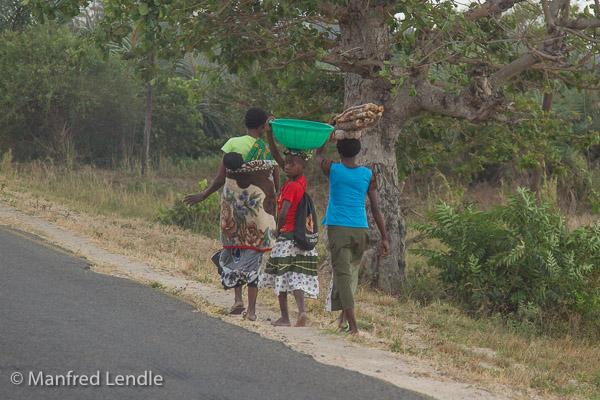 Zambia_2011_1D-4428.jpg