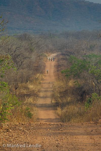 Zambia_2011_1D-7609.jpg