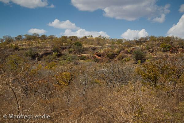 Zimbabwe_2012_1D-9120.jpg