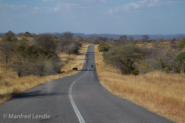 Zimbabwe_2012_1D-8923.jpg