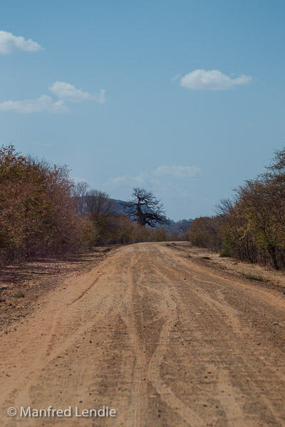 Zimbabwe_2012_1D-9091.jpg