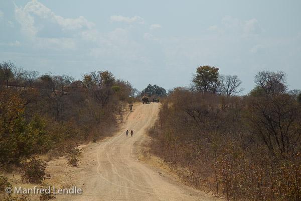Zimbabwe_2012_1D-9103.jpg