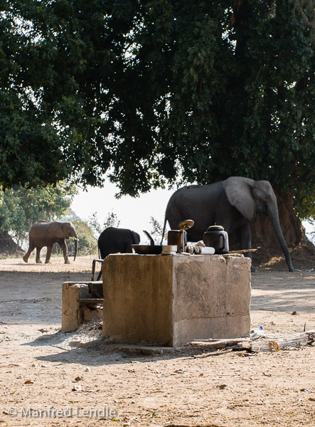 Zimbabwe_2012_20D-8828.jpg