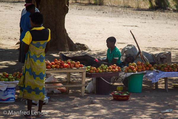 Zimbabwe_2012_1D-9078.jpg