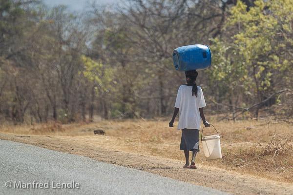 Zimbabwe_2012_1D-2182.jpg