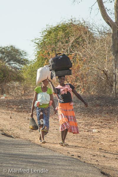 Zimbabwe_2012_1D-8947.jpg
