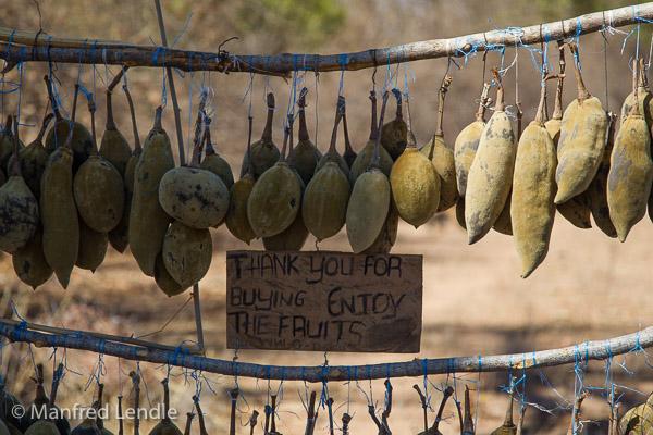 Zimbabwe_2012_1D-8909.jpg