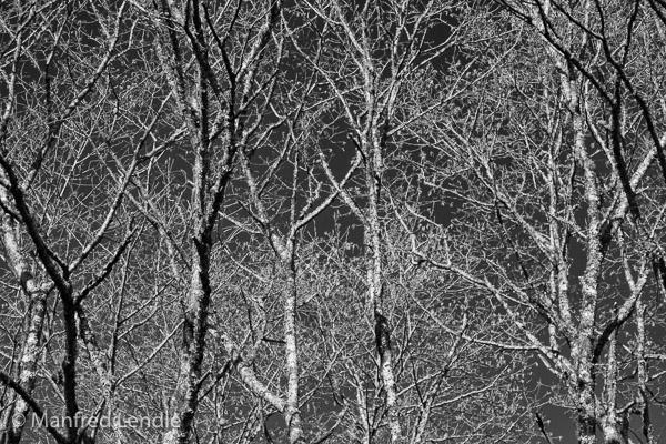 Suedamerika_2013_1D-2640.jpg