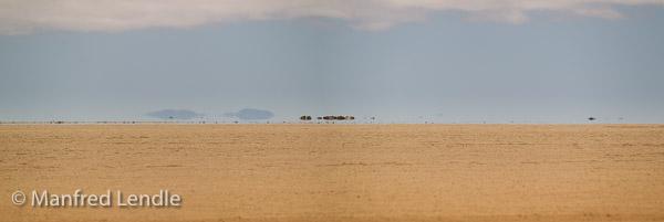 2014_Namibia_1D-7656.jpg