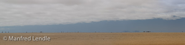 2014_Namibia_1D-7662.jpg