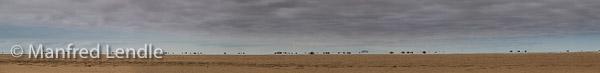 2014_Namibia_1D-7669.jpg
