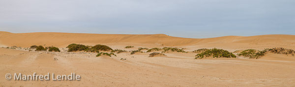 2014_Namibia_1D-8000.jpg