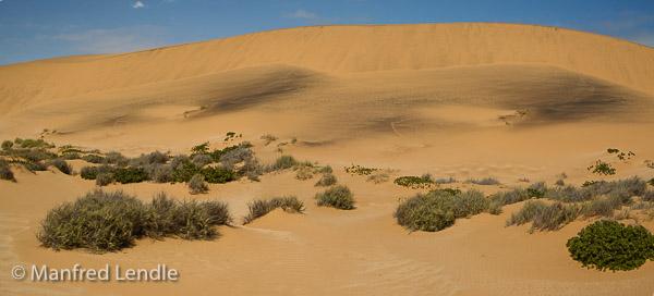 2014_Namibia_1D-8034.jpg