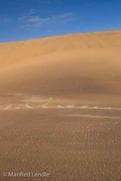 2014_Namibia_1D-8037.jpg