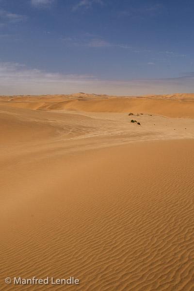 2014_Namibia_1D-8044.jpg