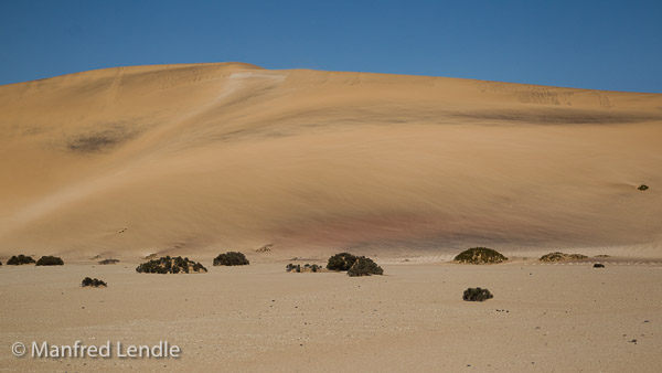 2014_Namibia_1D-8192.jpg