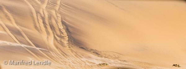 2014_Namibia_5D-5843.jpg