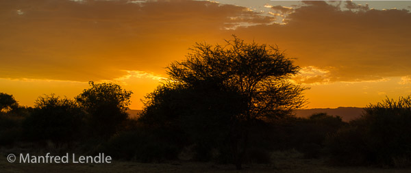 2014_Namibia_1D-5548.jpg