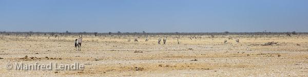 2014_Namibia_5D-3998.jpg