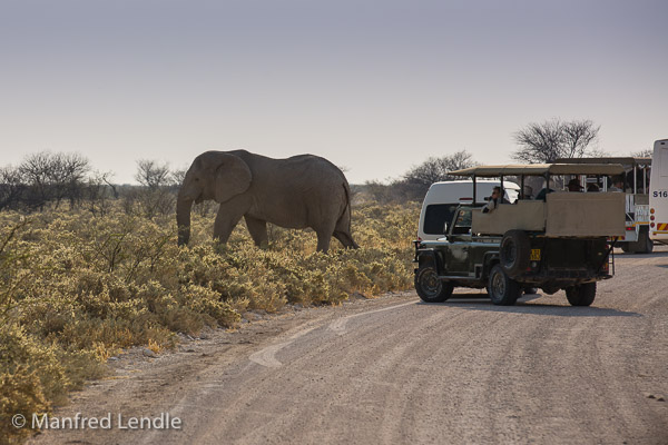 2014_Namibia_5D-3823.jpg