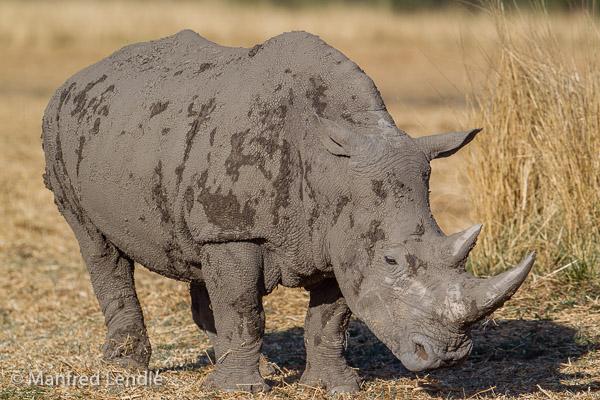 2014_Namibia_1D-5102.jpg