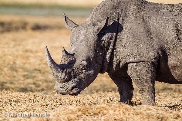 2014_Namibia_1D-5231.jpg