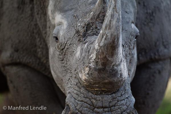 2014_Namibia_1D-5367.jpg