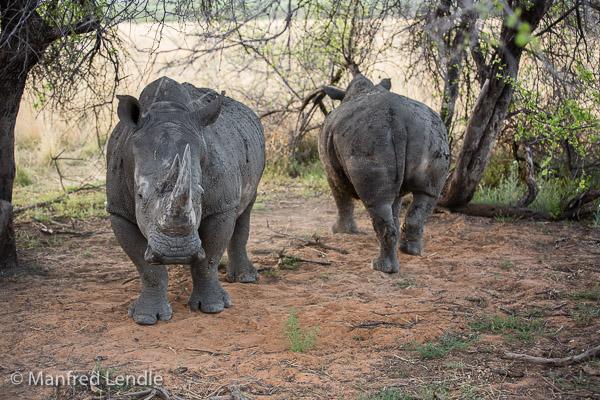2014_Namibia_5D-3463.jpg