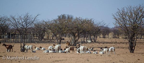 2014_Namibia_1D-6996.jpg