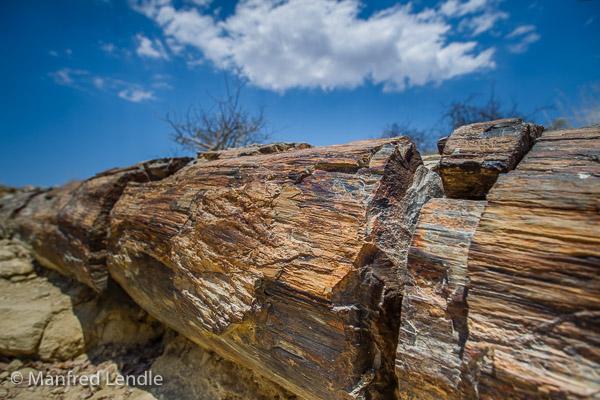 2014_Namibia_1D-6835.jpg