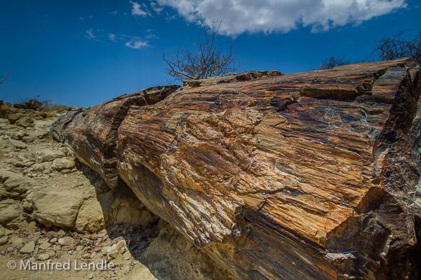 2014_Namibia_1D-6837.jpg