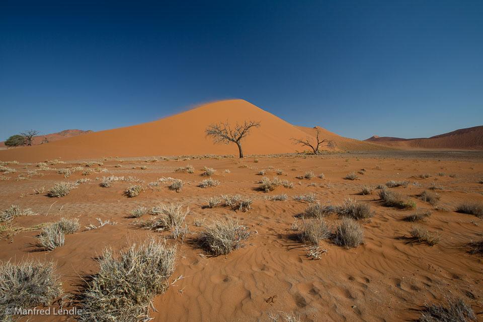 2014_Namibia_5D-9217.jpg