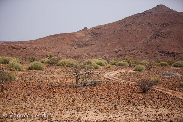 2015_Namibia_5D-0567.jpg