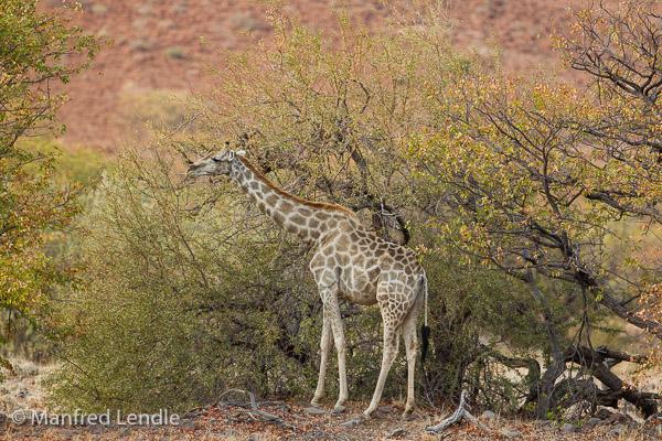 2015_Namibia_1D-1323.jpg