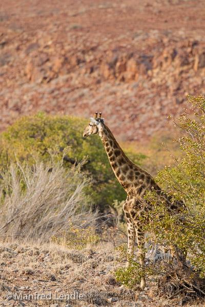 2015_Namibia_1D-1326.jpg