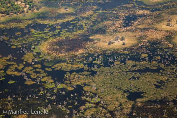 2015_Namibia_1D-7399.jpg