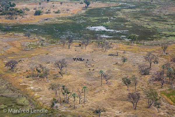 2015_Namibia_5D-4094.jpg