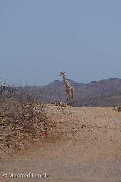 2015_Namibia_1D-2617.jpg