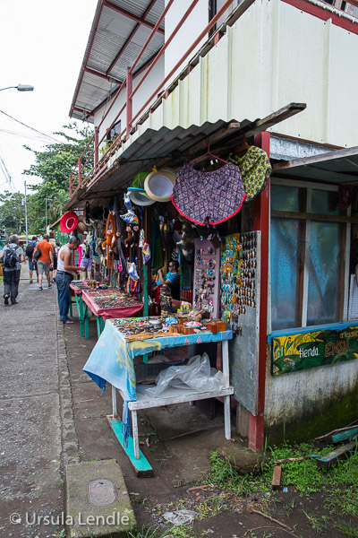 2017_Costa_Rica_5D-2869.jpg