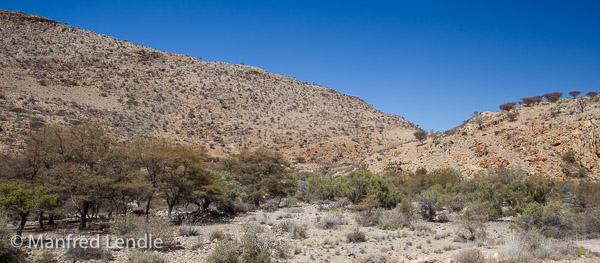 2018_Kalahari_1D-0721.jpg